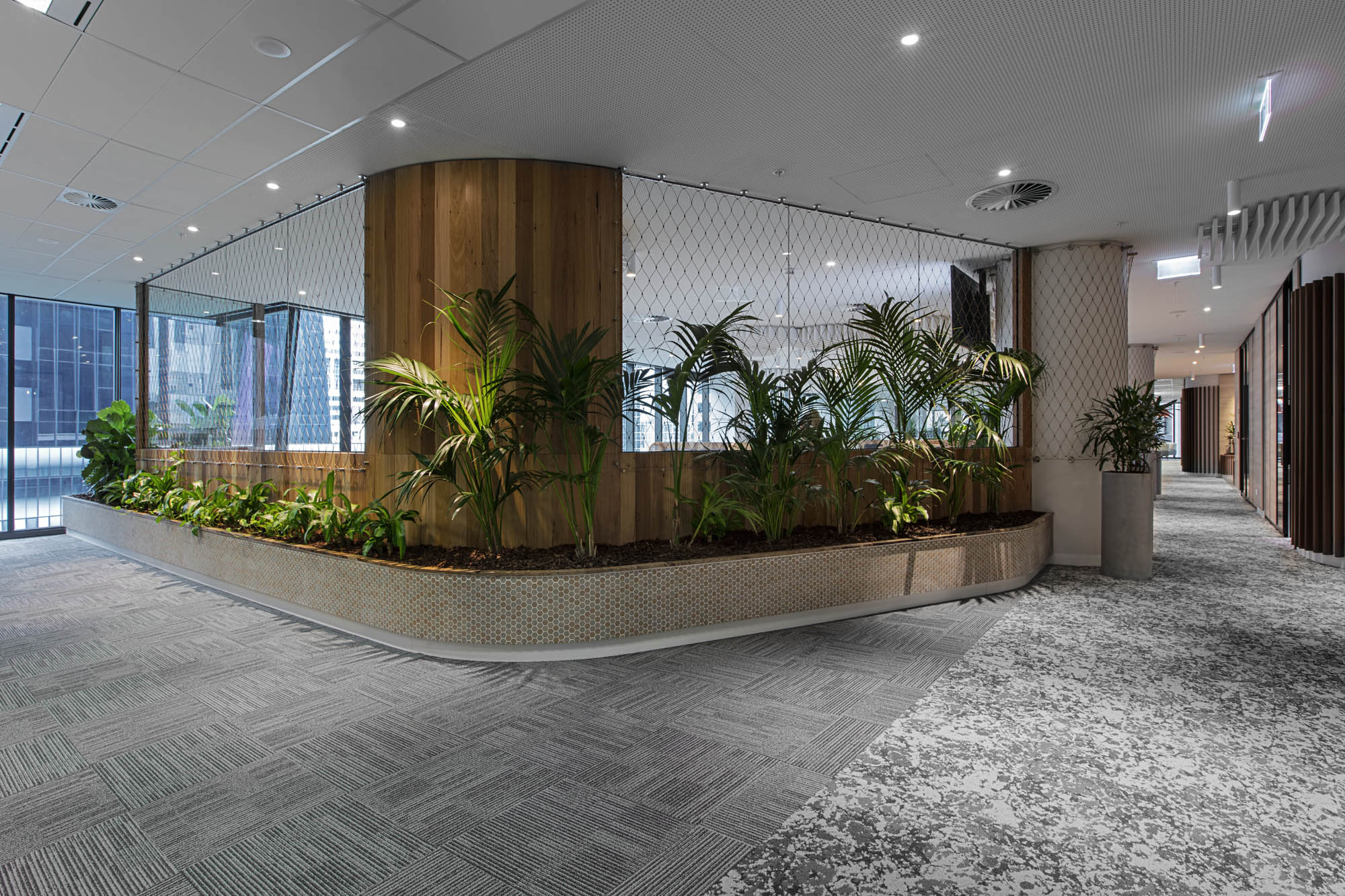 Worksafe office fitout melbourne partition wall timber and plants