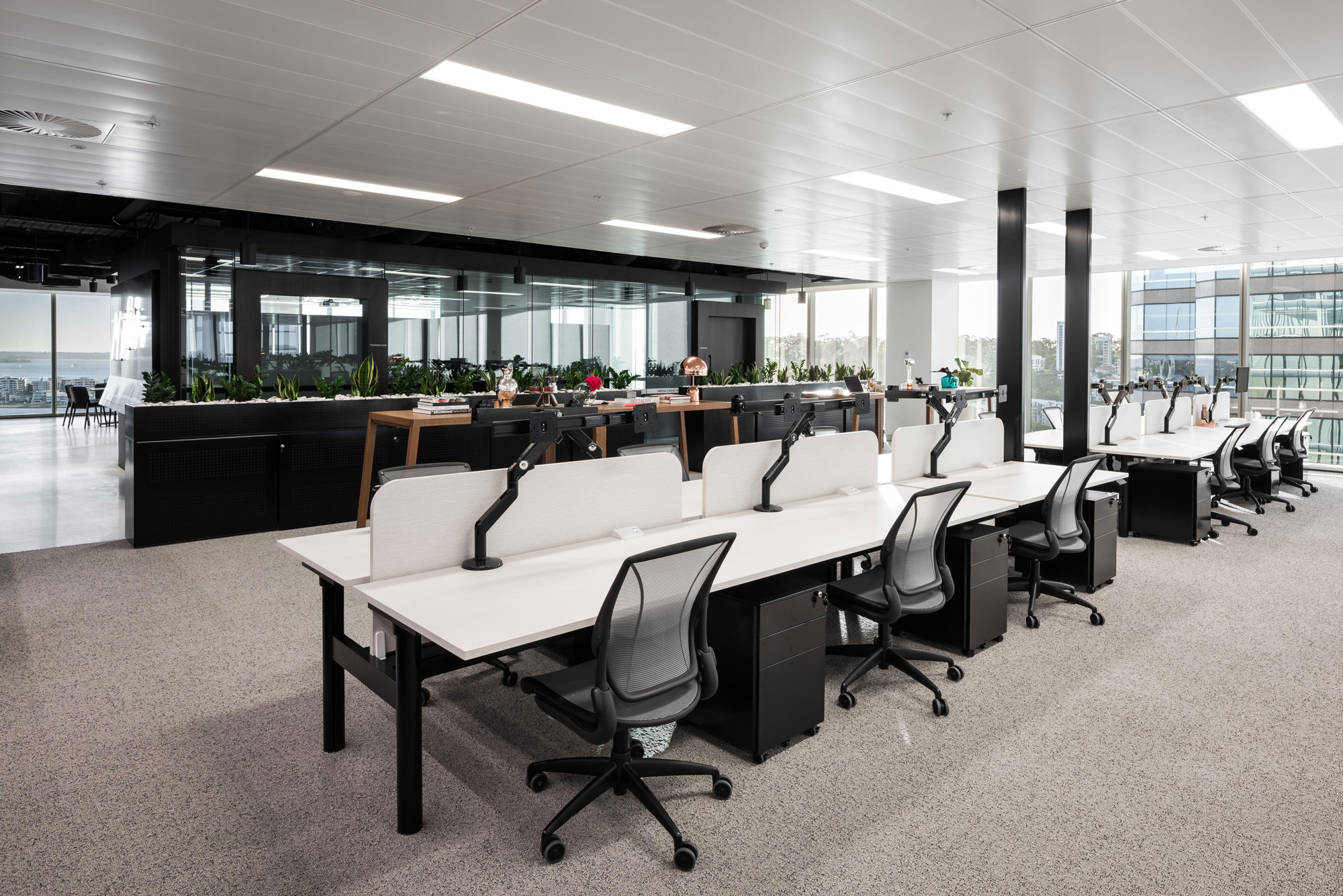 dentsu aegis network perth office fitout schiavello workstations and chairs