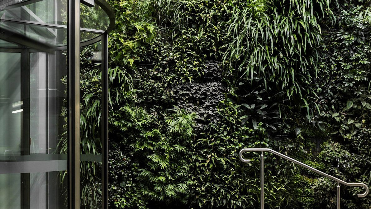 schiavello corporate social responsibility green wall