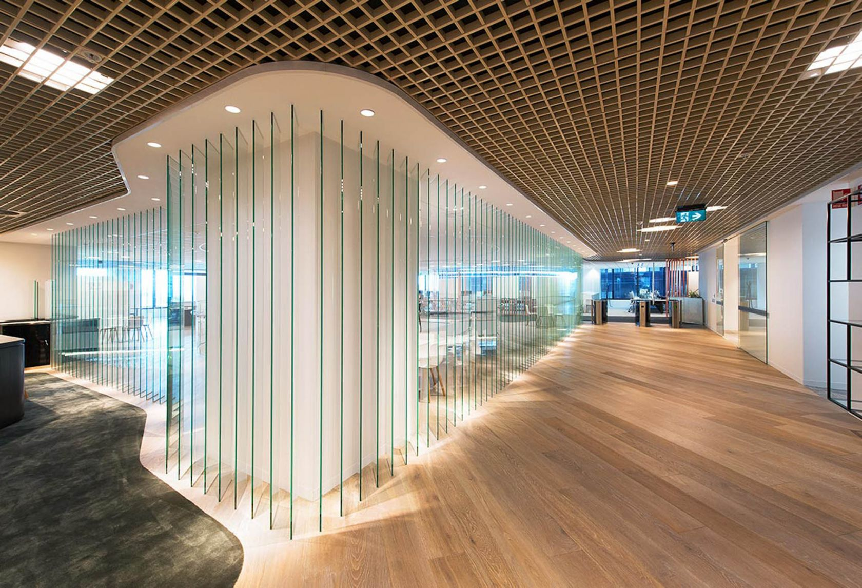 mlc office fitout glass wall