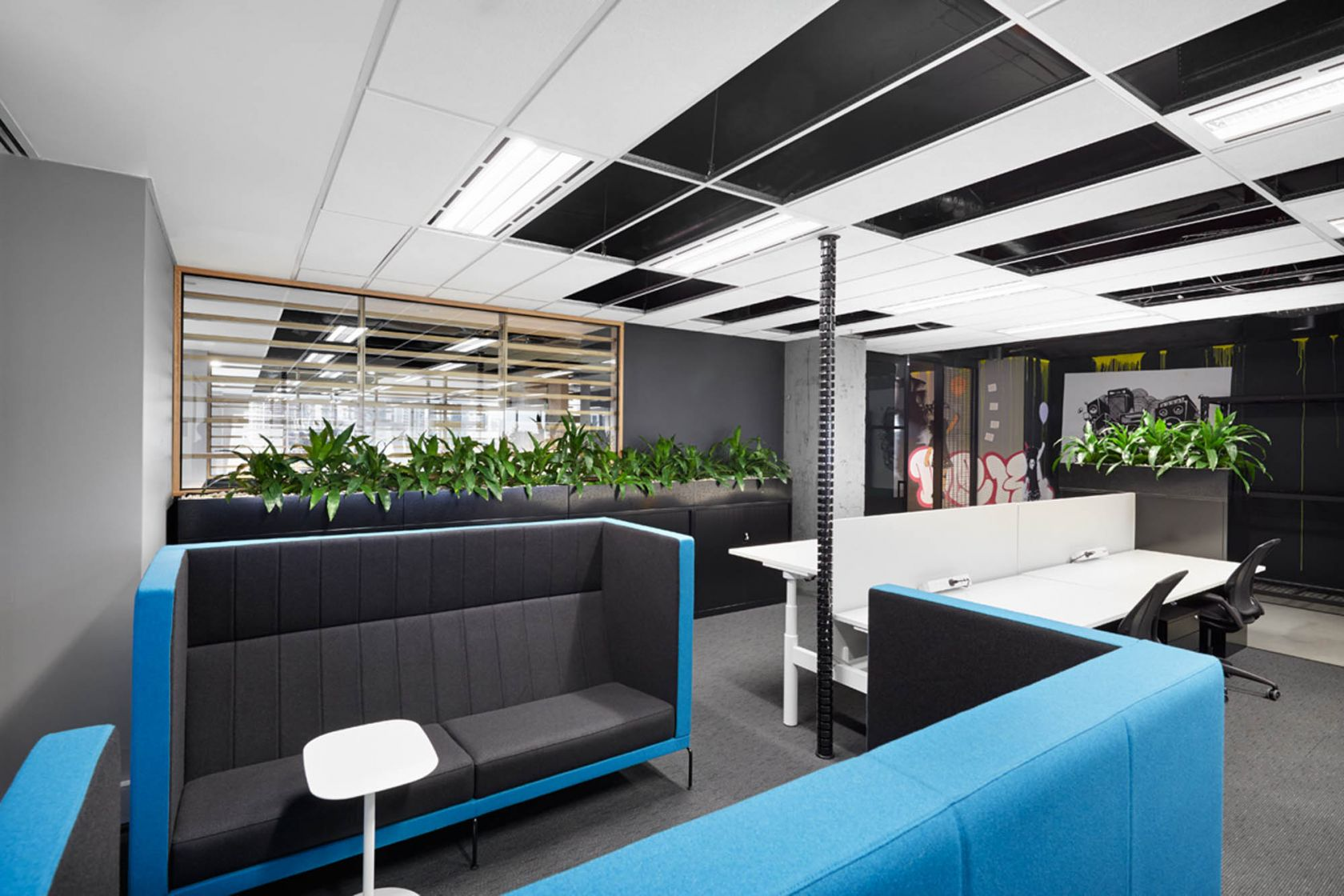 william street melbourne workplace fitout focus collaboration plants partition desk