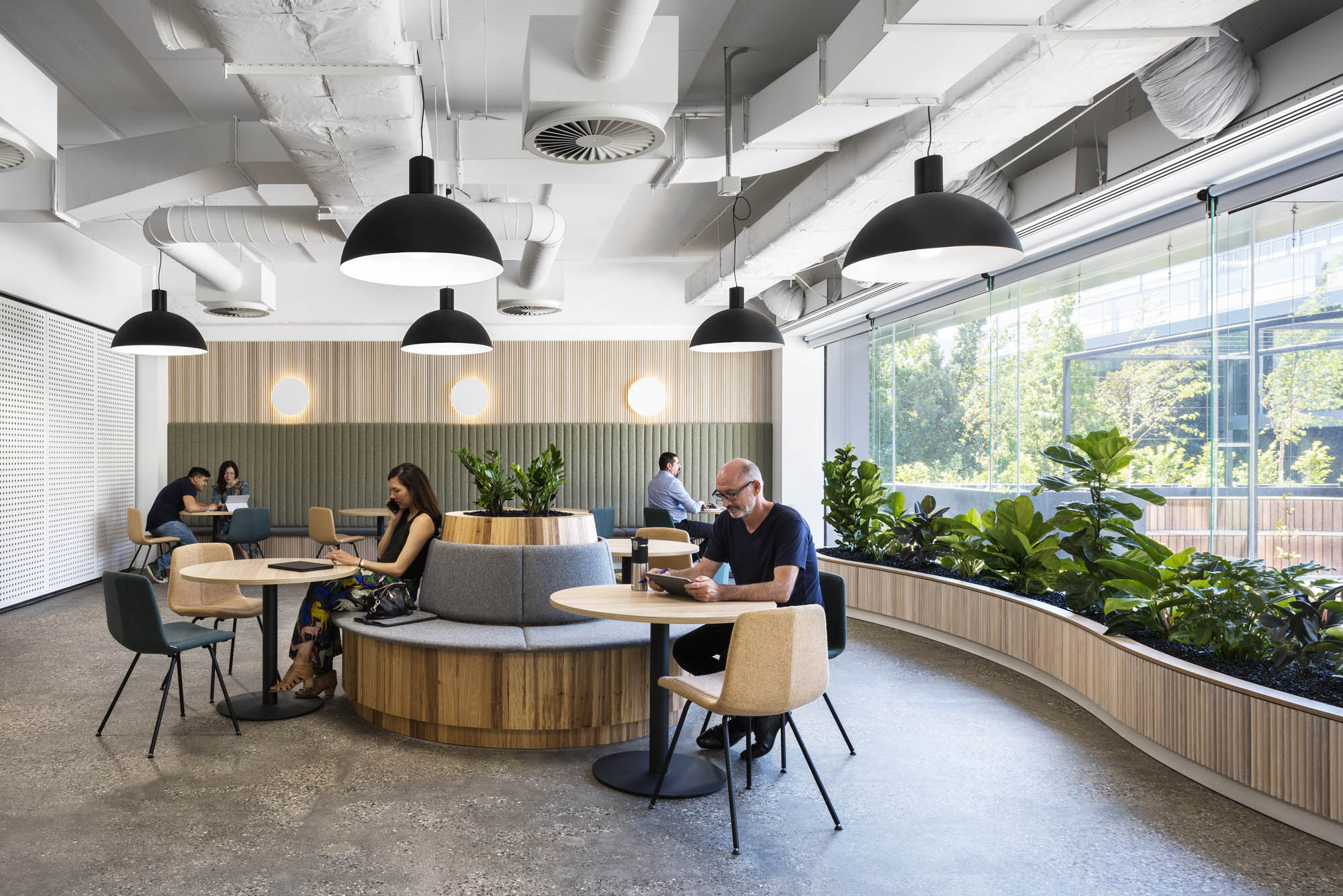 7 Eleven Melbourne commercial workplace fitout breakout timber planters window polished concrete